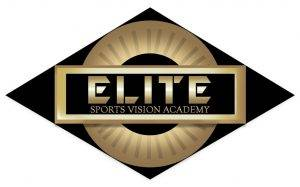 VCA Elite Vision Training Logo page 001 (1)